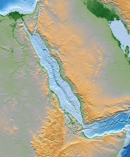 The Red Sea rift